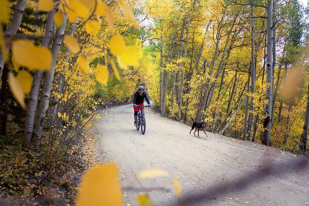 Big Fat Tire: Find new fall mountain bike rides on Gold Dust trail and Sheep Creek trail
