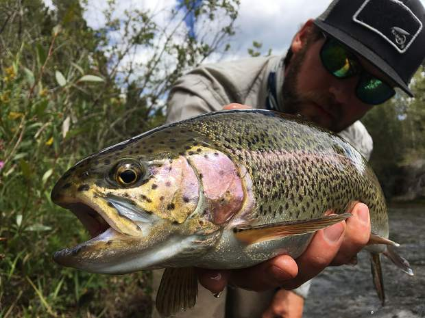 Colorado rivers fishing report for weekend Aug. 25-27