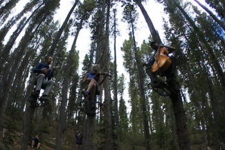 Summit 360: Tree-o performs at Breckenridge International Festival of Arts