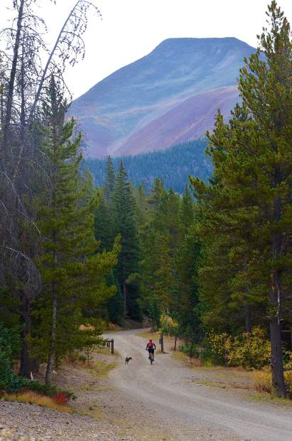 Wire Patch Trail with view of Mount Guyot in the distance outside of Breckenridge, CO.