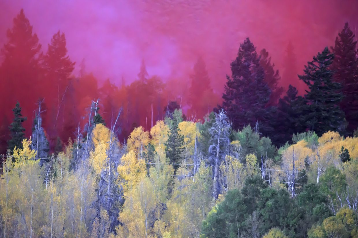 Red fire retardant slurry blend with trees along Tenderfoot Trail Road Monday, Sept. 18, in Dillon.