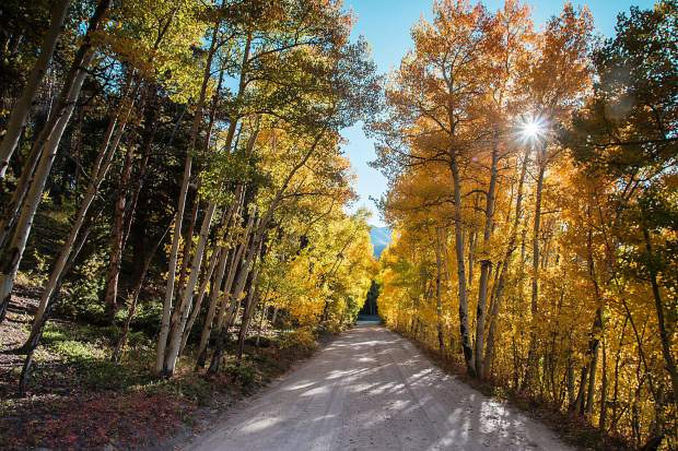 Boreas Pass is an easy hike or drive to see fall foliage on the south side of Breckenridge.