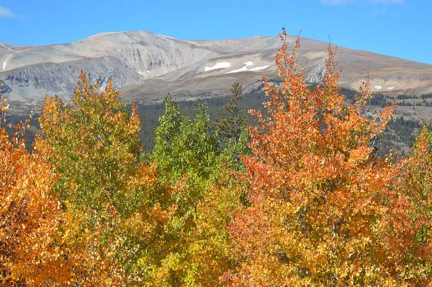 In the mountains, the leaves begin to change first at higher elevations, and move down to the valley bottoms.