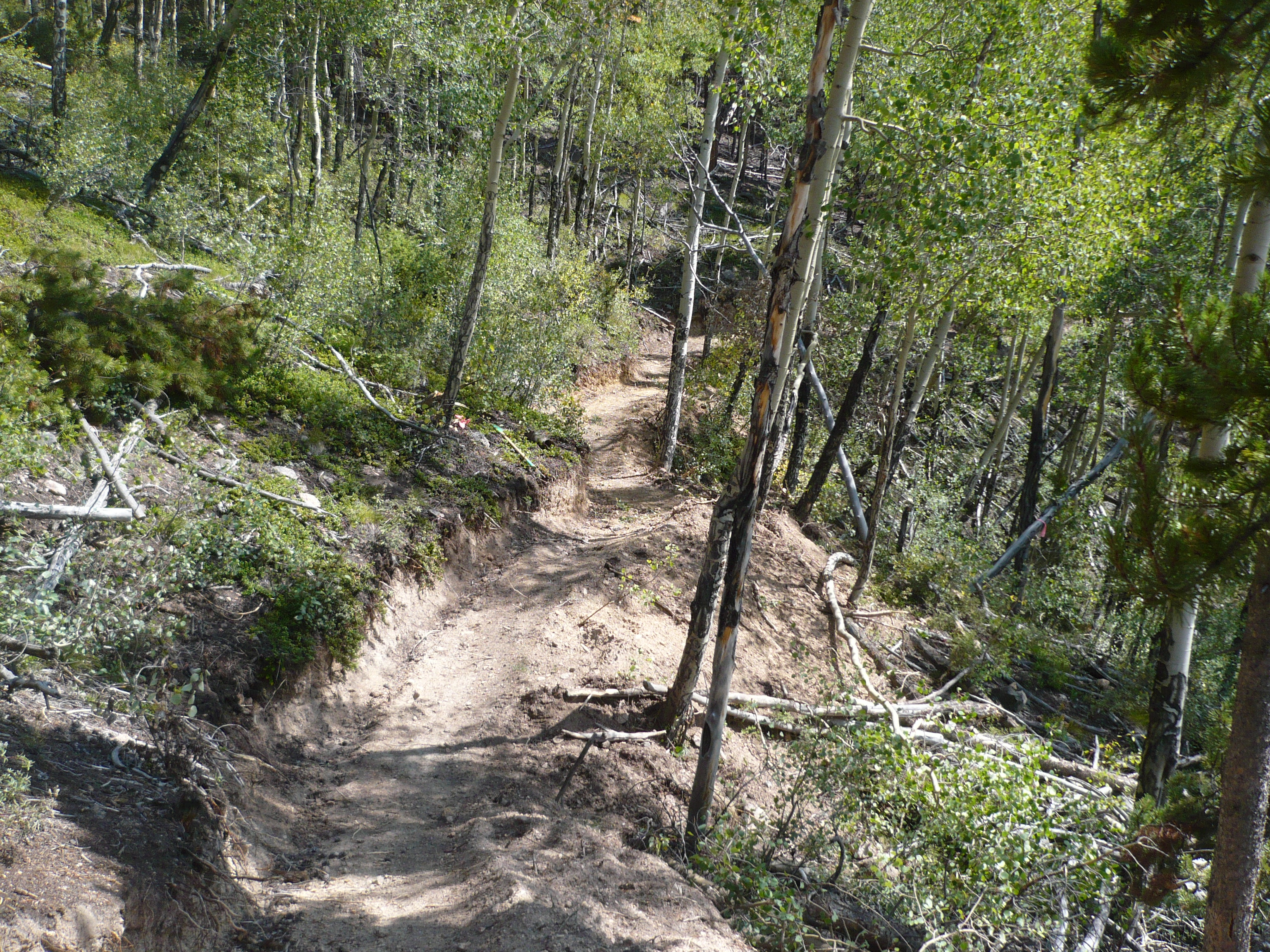 Tenderfoot Mountain trails re-opened with wildfire 100 percent contained
