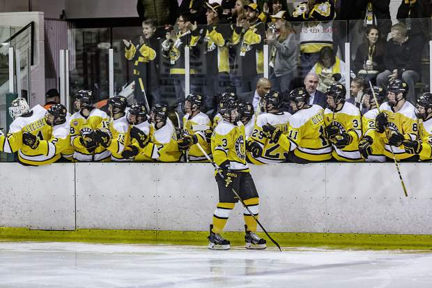 The Tigers bench congratulates the line after scoring a goal.