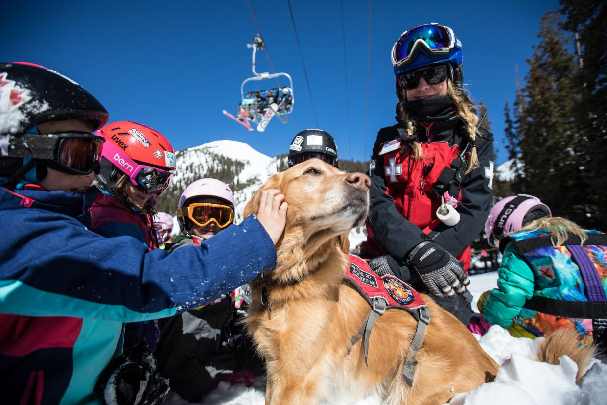 Rio interacts with visitors during an avalanche rescue dog demonstration at A-Basin.