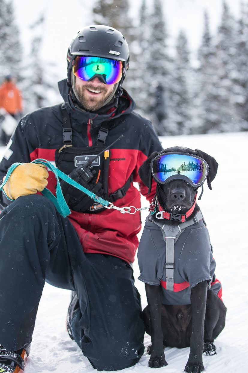 Max sits with his owner/handler/ski patroller Dom Vellone