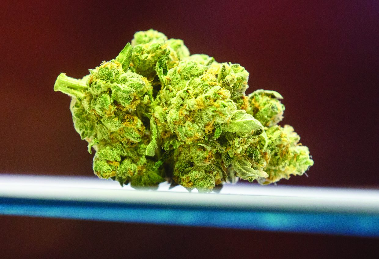 5 great wintertime cannabis strains (Sponsored) | SummitDaily com