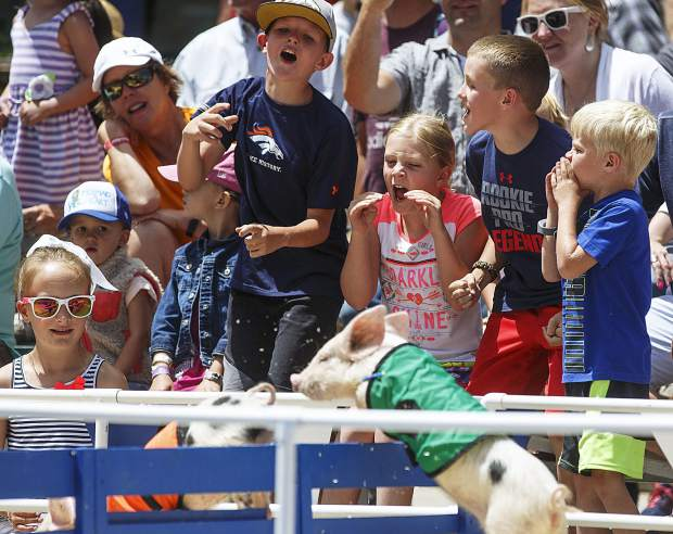 Pig racing fans cheer their favorite pigs during the annual Colorado BBQ Challenge Friday, June 16, on Main Street in Frisco.