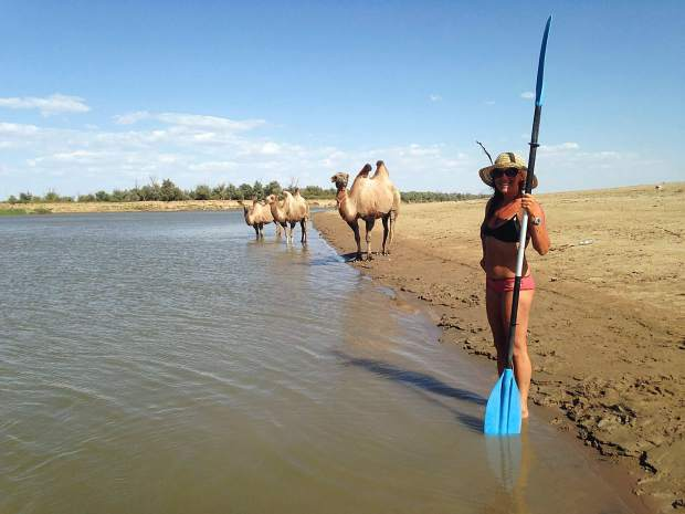 Callie Morgigno of Leadville holds up a kayak paddle with camels behind her while beside the Ural River in Kazakhstan.