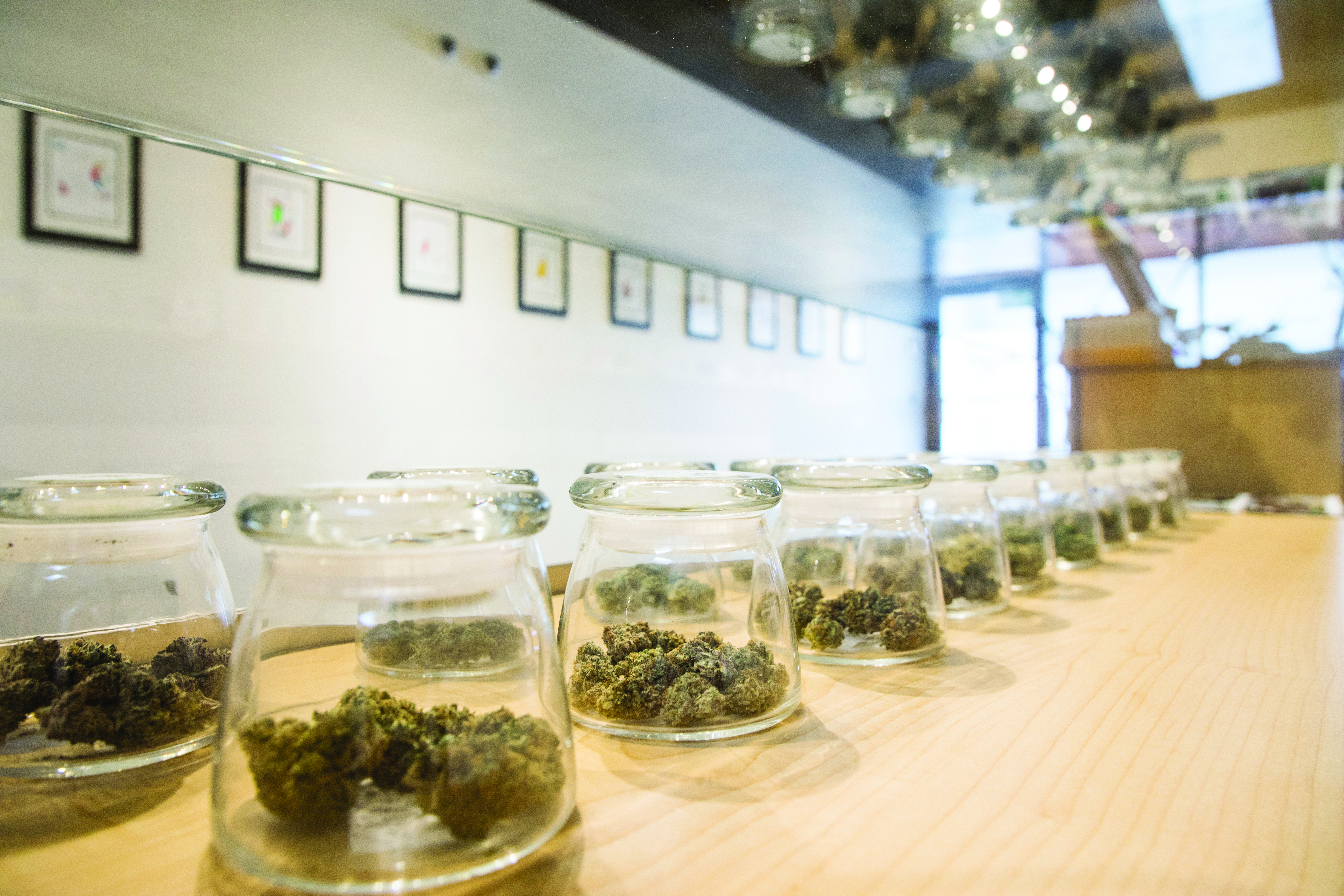 Experience the difference of organic cannabis and you'll never go back (Sponsored)