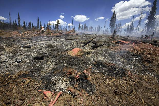 The ground continues to burn as a result from the Buffalo Fire in the Wildernest neighborhood Wednesday, June 13, near Silverthorne.