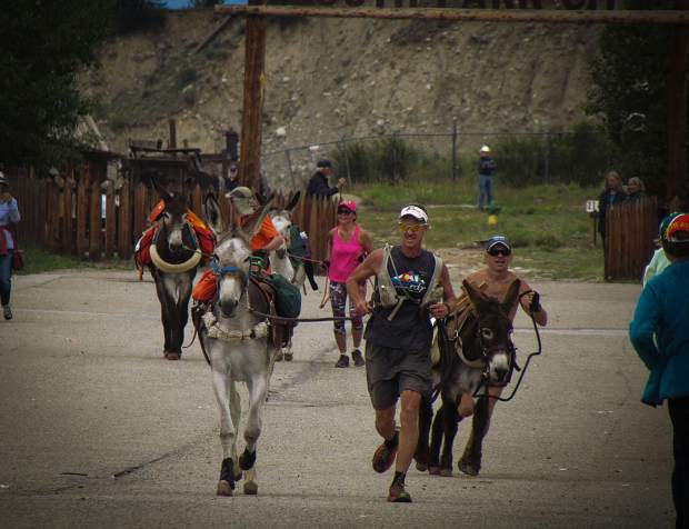 Racers run through historic South Park City with their burros - Spanish for