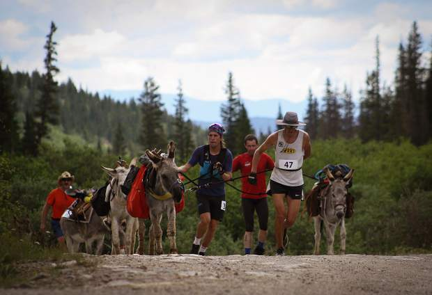 Burro racers run alongside their donkeys during the July 2017 Fairplay World Championship race.