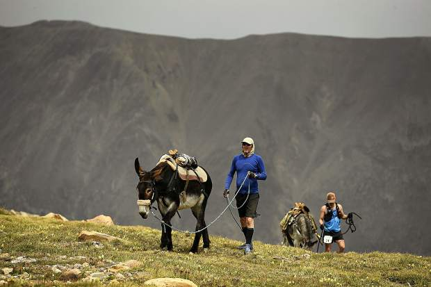 John Anderson and his donkey Miss Money Penny traverse near the summit of Mosquito Pass as they take part in the 70th annual World Championship Pack Burro Race on Sunday in Fairplay. Each runner must lead his donkey with a 15 foot lead rope and the donkey must carry 33 pounds in its pack. The runner is allowed to push, pull, drag or carry the burro but is not allowed to ride it. A team is made up of a man or woman and a burro.