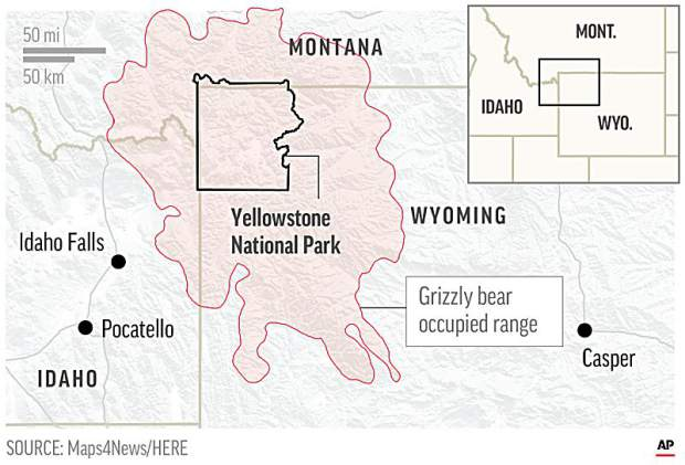This map shows the grizzly bear-occupied range across Yellowstone National Park.