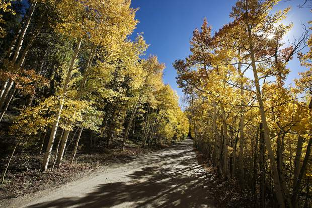 Blue skies and fall leaves on Boreas Pass Road Saturday, Sept. 15, in Breckenridge.