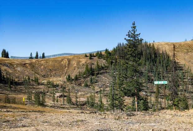 Trees that have been killed by spruce beetles are cut down and about 60 percent of this season's salvageable trees can be sold to lumber mills in Salida and Montrose, subsidizing some of the cost to Monarch on Wednesday, Sept. 26, 2018 in Monarch Mountain, Colo. (Dougal Brownlie/The Gazette via AP)