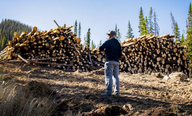 Scott Pressly, vice president of mountain operations is surrounded by an estimate of 500 trees that were cut down after being killed by spruce beetles on Wednesday, Sept. 26, 2018 in Monarch Mountain, Colo. (Dougal Brownlie/The Gazette via AP)