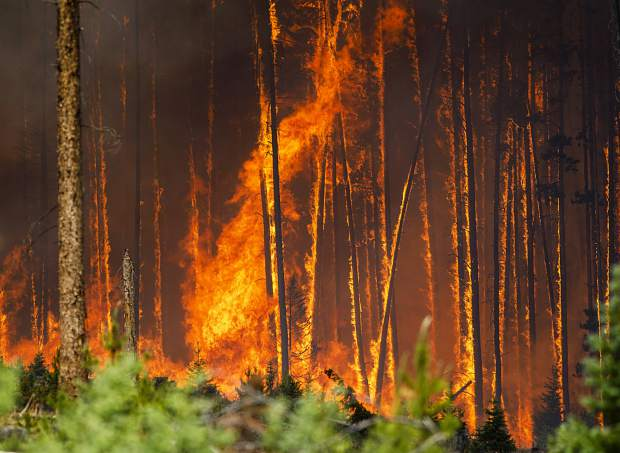 Flames engulf the trees in the Wildernest neighborhood Tuesday, June 12, near Silverthorne.