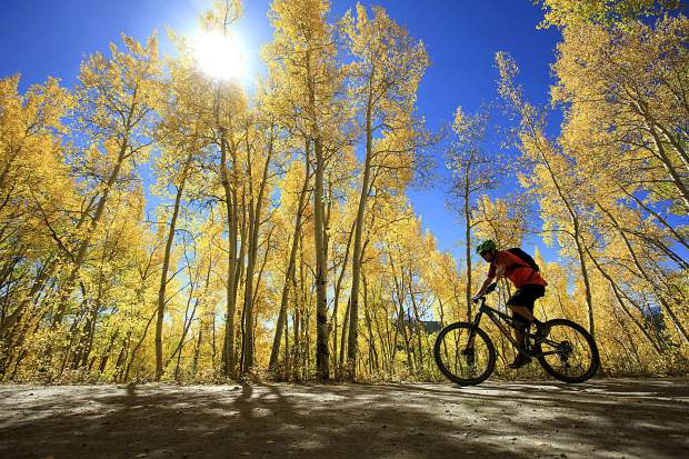 A mountain biker pedals pass the aspen trees on Boreas Pass Road Wednesday, Sept. 12, in Breckenridge.