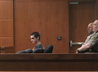 Man pleads guilty to stabbing Avon woman in exchange for 20-year sentence