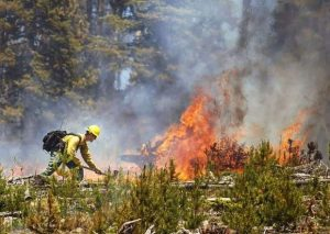 5 tips for NOT starting a wildfire on the Fourth of July