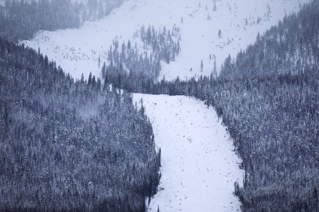 A new avalanche slide path seen below Mount Victoria Thursday, March 7, 2019, in Frisco, Colo. At least 4 feet of snow fell onto the Tenmile Range in the last 5 days has caused many new avalanches in the area in the recent days.