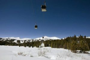 CPW: Gondola encroaches on wildlife preserve's most sensitive time of year for moose, mule deer
