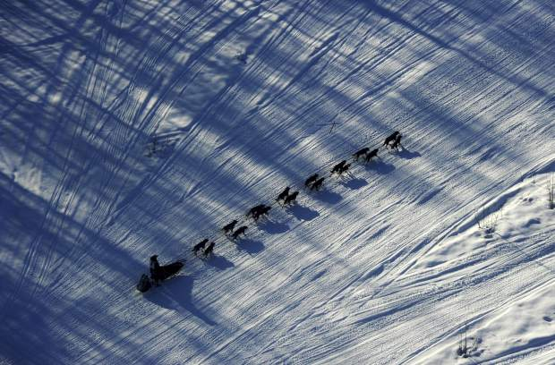 Musher Nathan Schroeder drives his dog team down the trail just after the start of the Iditarod Trail Sled Dog Race near Willow, Alaska. The world's foremost sled dog race kicks off its 47th running this weekend on Saturday.