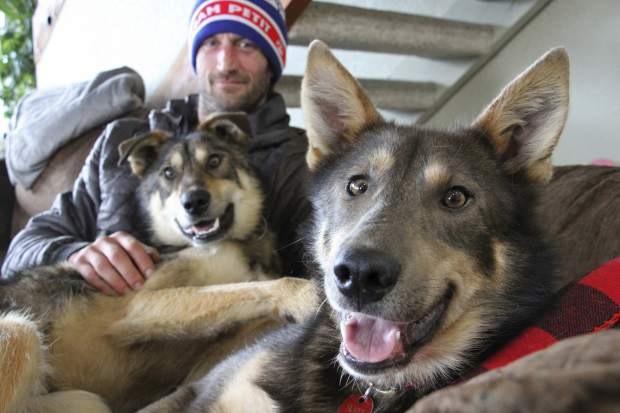 Iditarod musher Nicolas Petit poses with two of his dogs in Anchorage, Alaska, on Wednesday. The Frenchman Petit was in the lead of this year's race but his dog team quit running after he yelled at Joey, right, to stop picking on Danny, left. Petit says that isn't the reason the dogs quit running; instead, they quit about the same point the team got lost in a blizzard in the 2018 race.