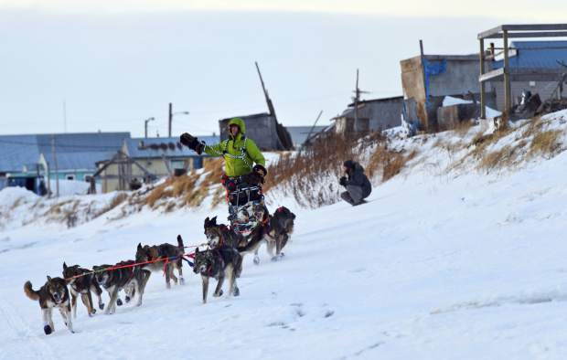 Nicolas Petit arrives in Unalakleet, Alaska on Sunday morning in the lead of the Iditarod Trail Sled Dog Race. The Iditarod musher, Petit, who was hours ahead in the Alaska race when his dogs refused to keep running is dismissing critics who say he ran them too hard. Petit said this week that the dogs are treated well and they get plenty of rest during the 1,000-mile  Iditarod Trail Sled Dog Race.