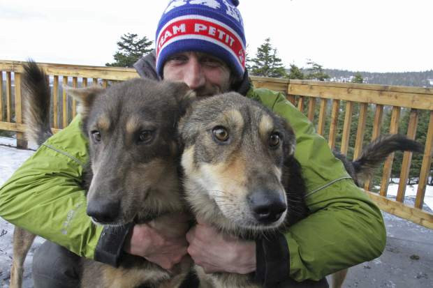 Iditarod musher Nicolas Petit poses with two of his dogs in Anchorage, Alaska. The Frenchman was in the lead of this year's race but his dog team quit running after Petit yelled at Joey, left, to stop picking on Danny, right. Petit says that isn't the reason the dogs quit running; instead, they quit about the same point the team got lost in a blizzard in the 2018 race.
