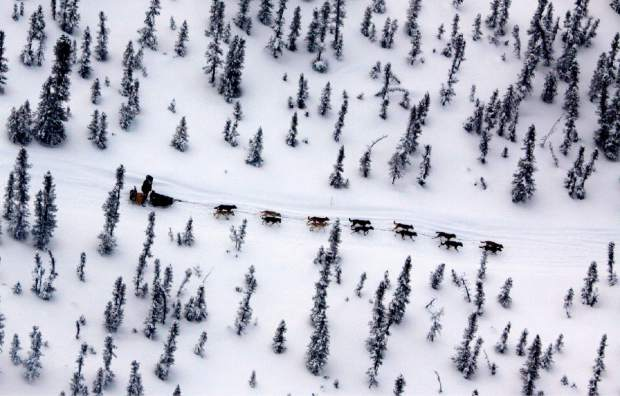 Matt Hayashida of Willow, Alaska, drives his team along the Iditarod Trail Sled Dog Race trail near the Takotna, Alaska checkpoint in 2009. Technology is used to track Alaska's Iditarod Trail Sled Dog Race far from the competitors tackling the off-the-grid route. Fifty-one mushers as of Friday are traveling long stretches between remote village checkpoints with no other company but the dogs pulling their sleds.