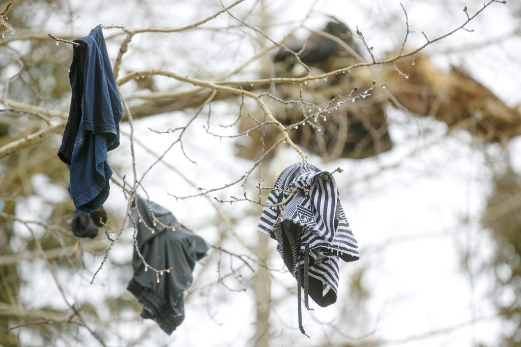 Clothing hangs in a tree at least 20 feet in the air as a result of the explosion Wednesday, April 3, along Royal Tiger Road in Breckenridge. Around 1:30 a.m. Wednesday, the house exploded due to an apparent rupture in the home's gas line. Two people were sleeping inside and were only injured.