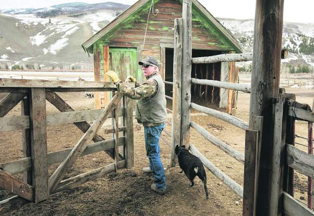 Leonard Causland navigates between gates at the Maryland Creek Ranch Thursday, April 18, near Silverthorne.