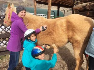 Blue River Horse Center invites Summit County community to 'Meet the Horses' at May 11 open house