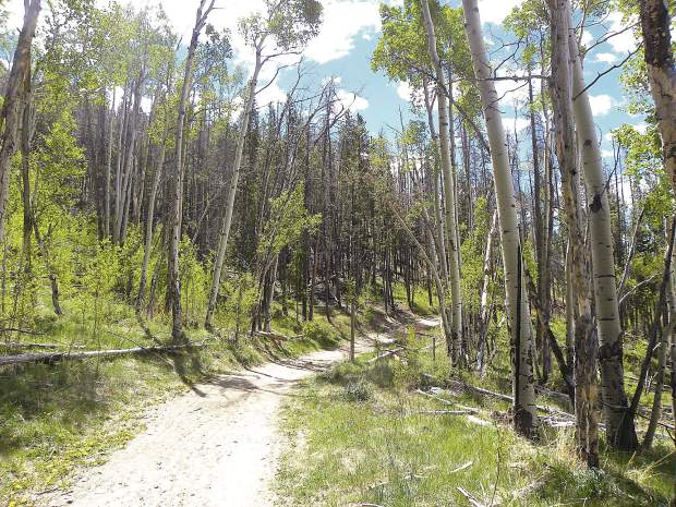 The Oro Grande Trail is a good option for early-season hiking and biking in Summit County, with a fun and fast mix of double-track and single-track.