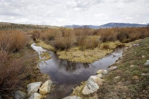Frisco residents push back against potential wetland mitigation site