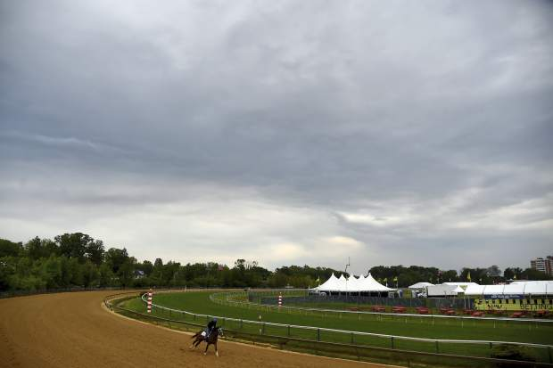 A horse exercises on Thursday at Pimlico Race Course in Baltimore.