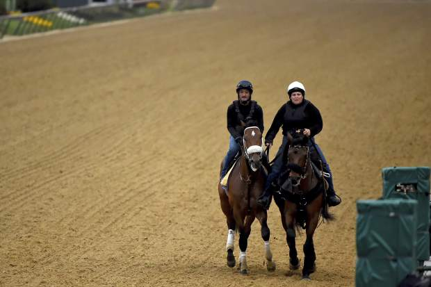 Preakness Stakes entrant Owendale, left, is led off the track on Thursday at Pimlico Race Course in Baltimore.
