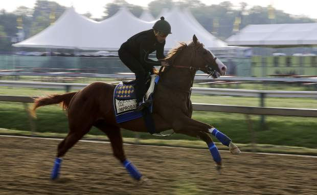 Improbable runs during training for Saturday's Preakness horse race at Pimlico race track in Baltimore on Friday.