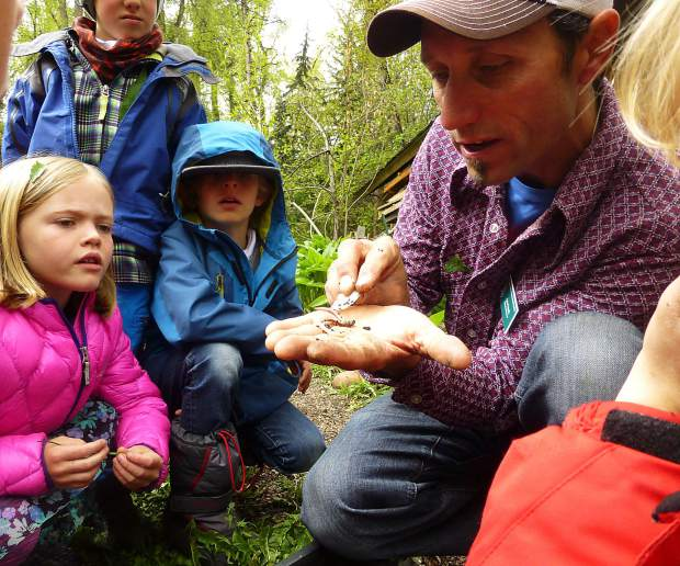 Arin Trook was the education director at the Aspen Center for Environmental Studies since September 2013. Trook, 48, left behind a wife and two children when he was killed in an avalanche in January on Green Mountain near Ashcroft.