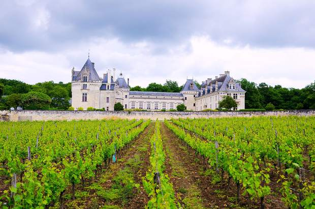 The Loire Valley in Central France is a popular travel destination well known for its castles and chateaux as well as the Sancerre wines made from sauvignon blanc grapes.