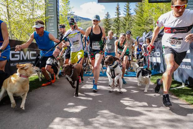 Runners and dogs begin the Rocky Dog Trail Run for the GoPro Mountain Games in Vail on Thursday.