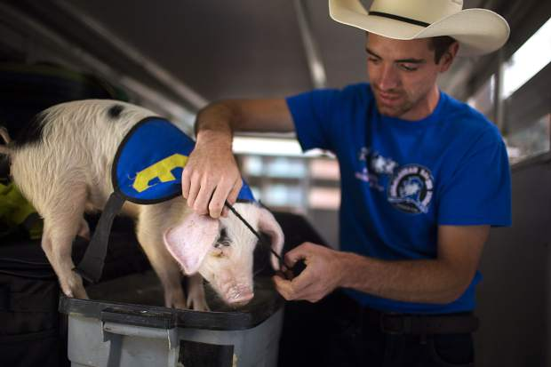 All-Alaskan Racing Pigs show host James Wilkinson puts on a race uniform Saturday June 15, on Main Street in Frisco.