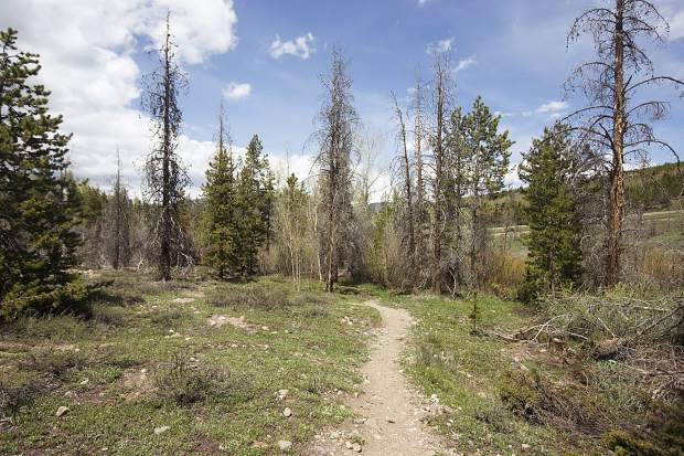 Silverthorne to host trail construction day this weekend