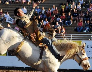 Steamboat Springs Pro Rodeo Series kicks up dirt starting Friday
