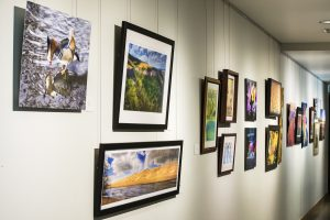 Silverthorne art exhibit opens Thursday