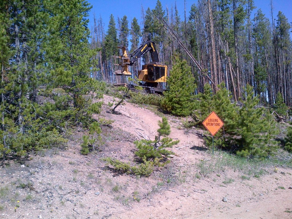 Forest Service to begin Ophir Mountain forest thinning project